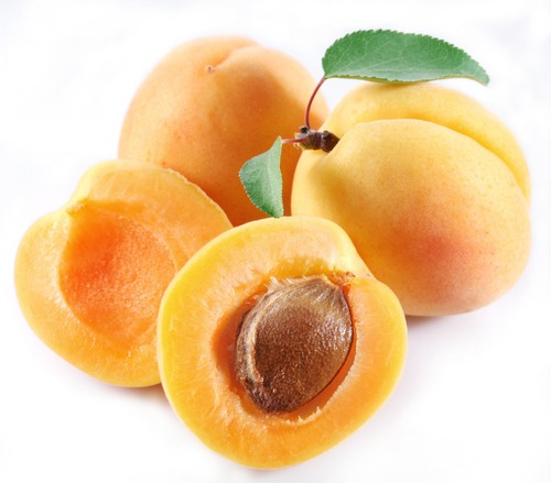 Абрикос обыкновенный (Prunus armeniaca)